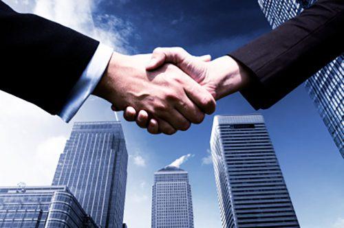 Partner / Investor
